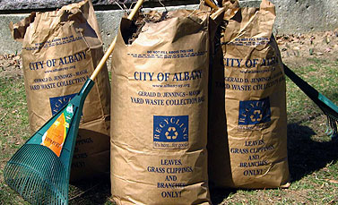 Albany Recycles Leaf Collection